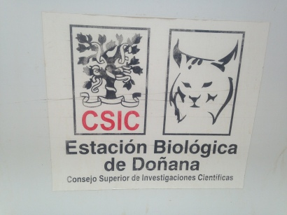 The symbol of the Iberian lynx, one of the world's most endangered cats, and one that is dependent on Doñana for its survival, is a fitting icon for the station.